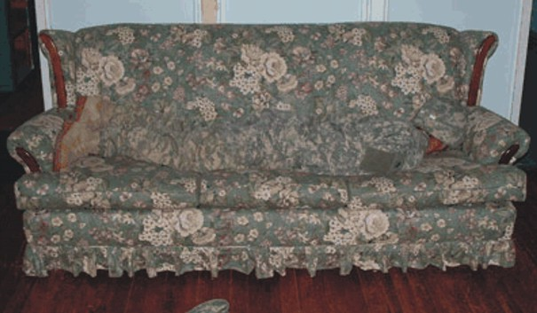 Blended Couches